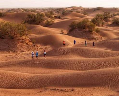 6 Days trip Marrakech to desert